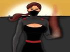 Shadow of the Ninja 2Hacked
