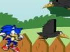 Sonic in GardenHacked