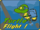 Turtle FlightHacked