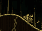 Donkey Kong Jungle RideHacked