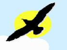 Gull BombsHacked