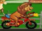 Lion RideHacked