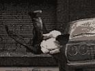 The StuntmanHacked