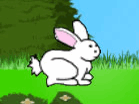Tappy BunnyHacked