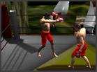 Hyrule Boxing Challenger