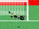 2010 World Cup Shootout Hacked