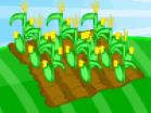 Farm Fun Hacked
