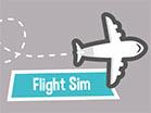 Flight Sim Hacked
