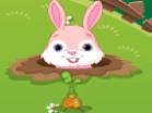 Funny Bunny Hacked
