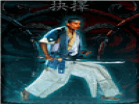 Kung Fu ElectionHacked