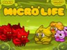 Micro LifeHacked