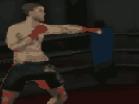 MMA Training GroundsHacked
